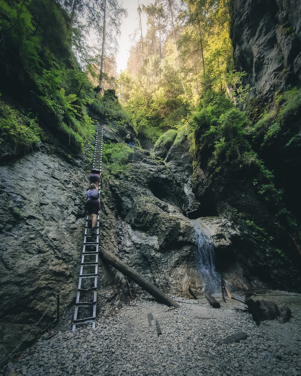 slovak paradise climbing a tall ladder