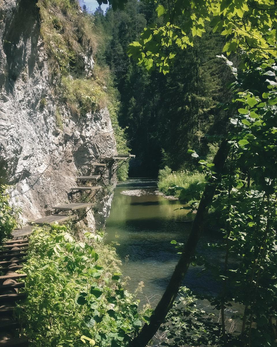 Hiking path along the Hornadu river