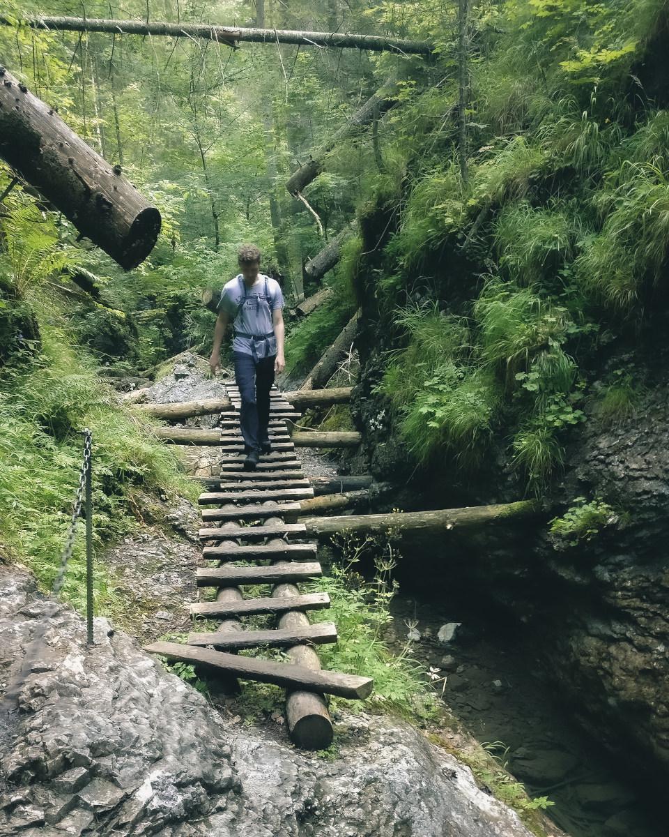 Hiker walks on wooden ladder