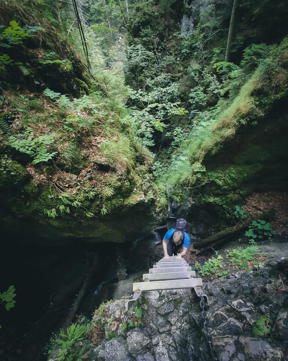 Hiker climbs ladder