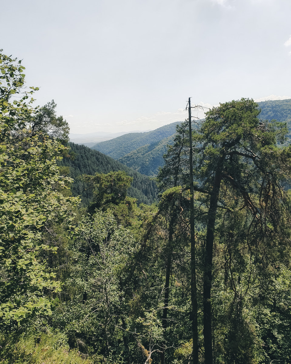 View at the mountains in a national park
