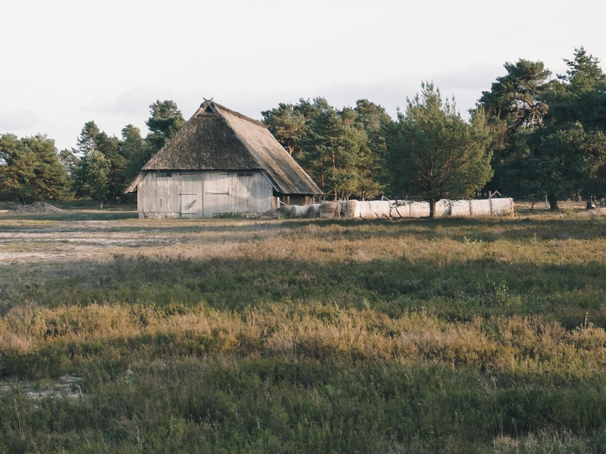 Wooden barn in the Osterheide
