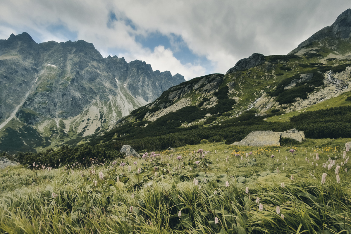 Landscape in the High Tatras