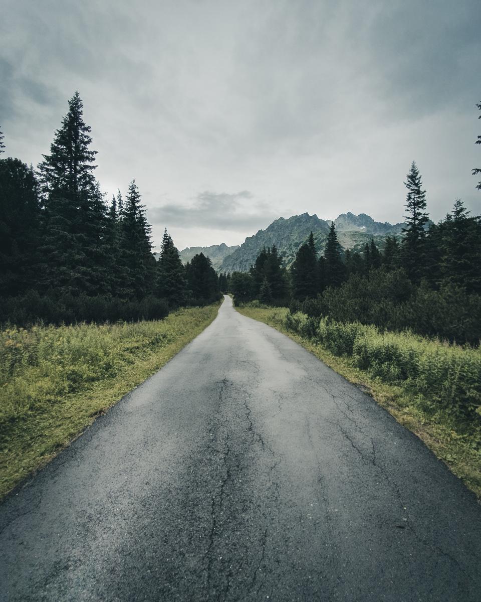 Asphalted hiking trail to Popradske Pleso