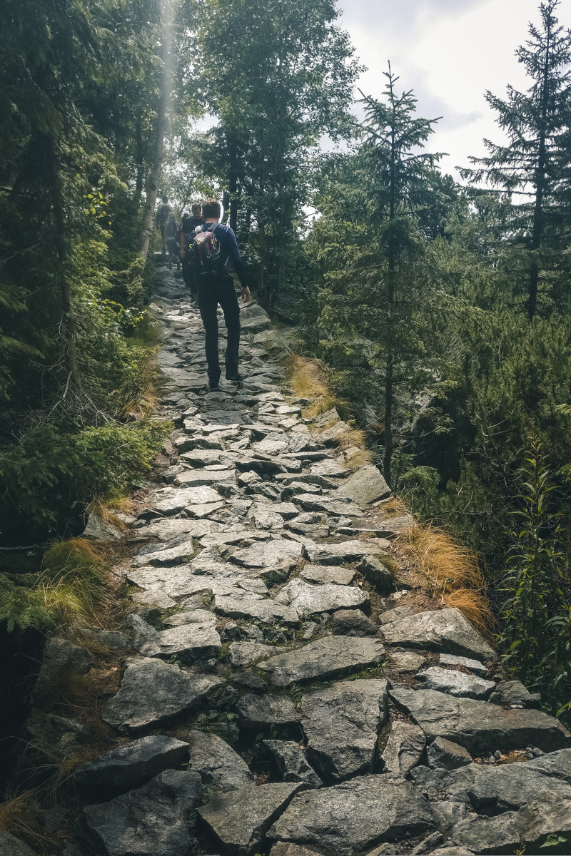 Hiker on the mountainside