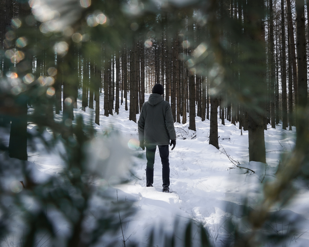 Man in focus framed by fir trees in the snow