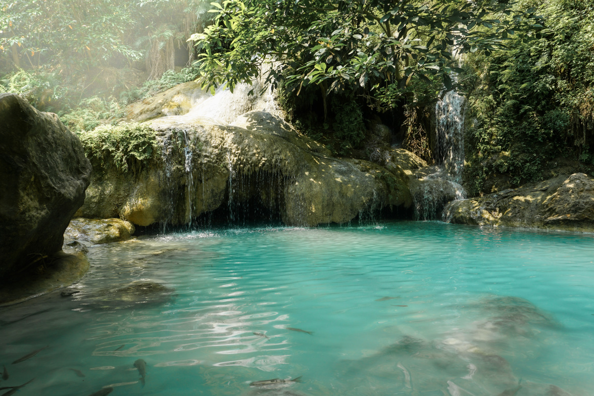 Heavenly pool with fish in front of a waterfall
