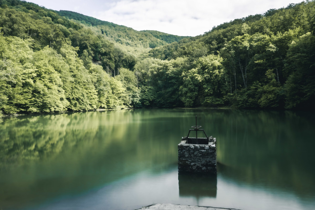 Lake with green water and reflection in the forest
